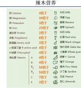 辣木籽的功效有很多,哪些人不能吃?