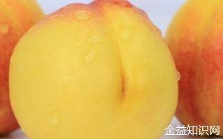 黄桃与什么食物相克
